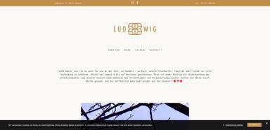 Ludwig 8